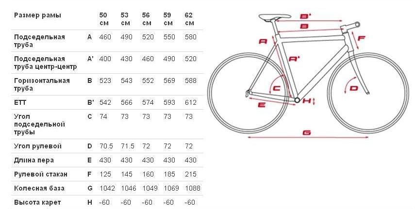 база вариантов размер колеса велосипеда урал комнат